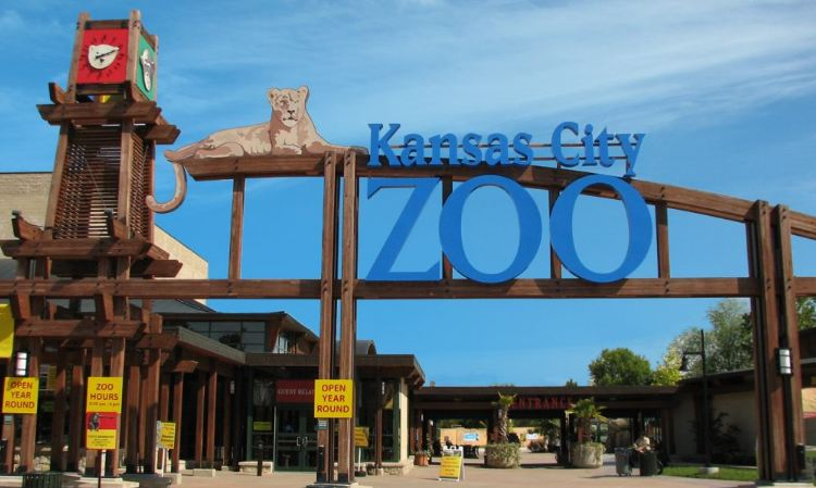 Kansas City Zoo Visitor Survey Outside